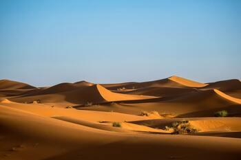 désert 350